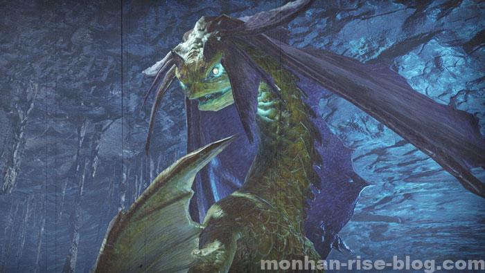 人魚竜「イソネミクニ」:モンスターの種別