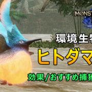 ヒトダマドリ - RISE環境生物出現場所