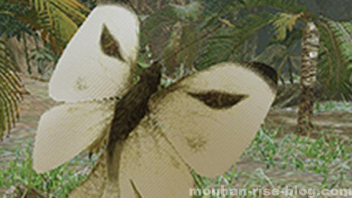 環境生物「イッタンモシロ」:イッタンモシロの特徴