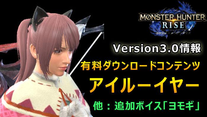 Ver3有料DLC