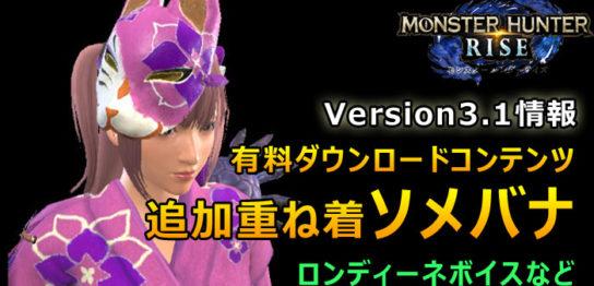 Version3.1 ソメバナ